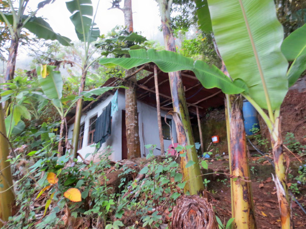 A Sustainable Lifestyle Retreat: Solutions to Our Ecological Crisis