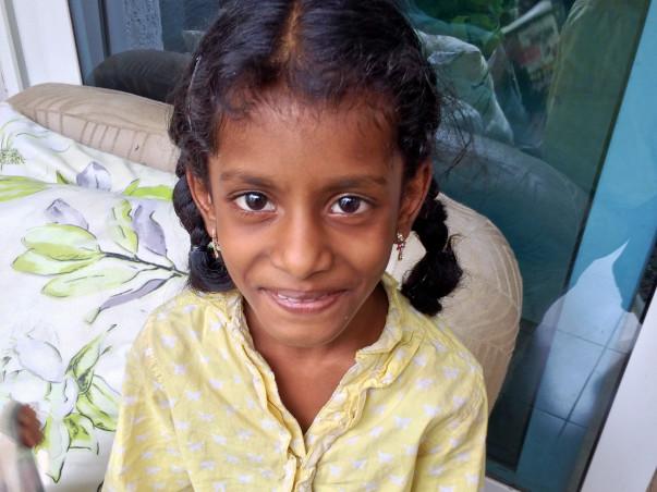 Help Krista's family survive !