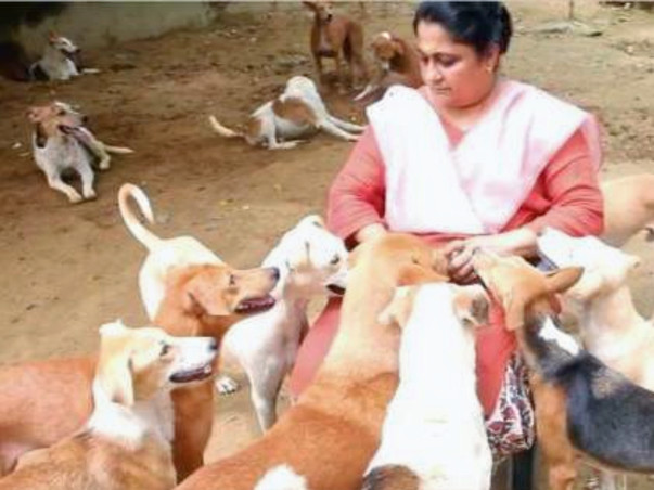 Support The Dog Lady of Delhi In Building an Animal Hospital.
