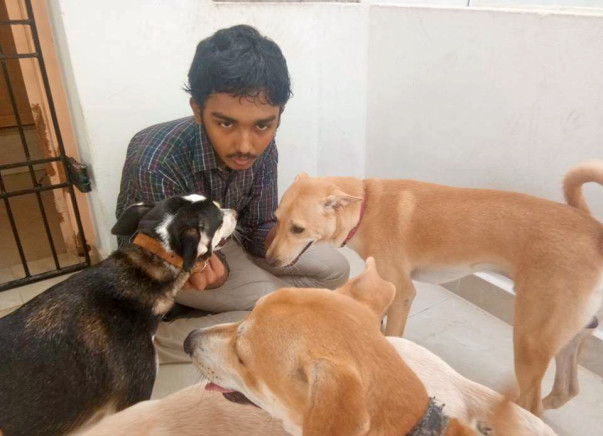 Help Sai Vignesh Pay The Vet Bills For His Rescued Animals