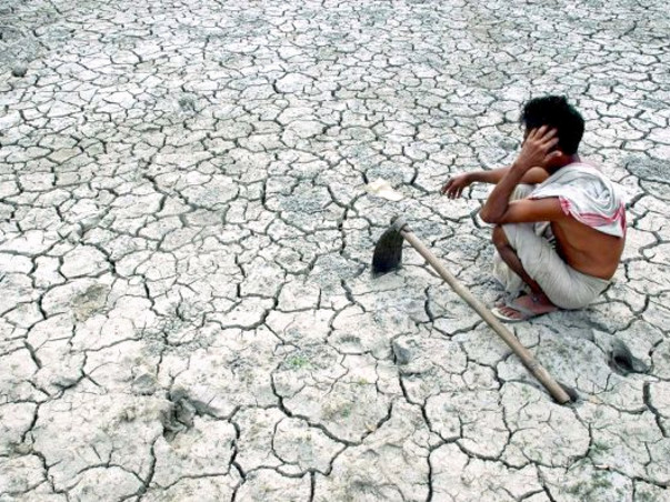 Help the victims of the farmer suicides in Vidarbha region of Maharashtra