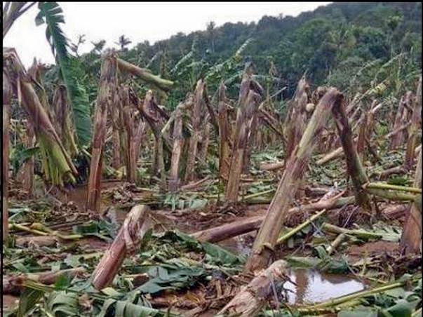 Help Kerala flood victims