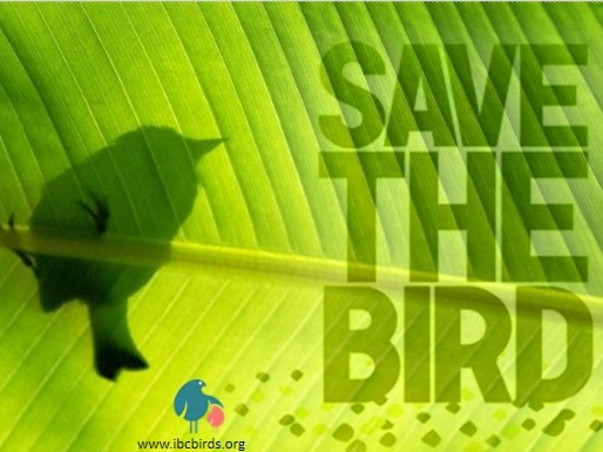 Join Us To Save Indian Native Birds