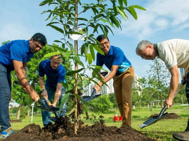 PLANT TREES – SAVE OUR PLANET EARTH.