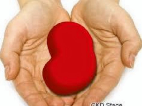 Help poornima get kidney transplanted