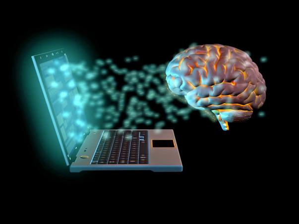 Help Us Understand How Brain Works