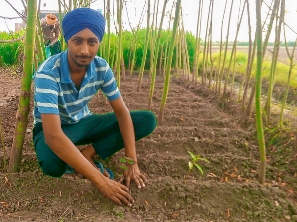 Help Me Plant Trees For Our Planet