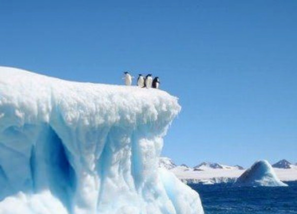 Expedition to Antarctica for Sustainable Change