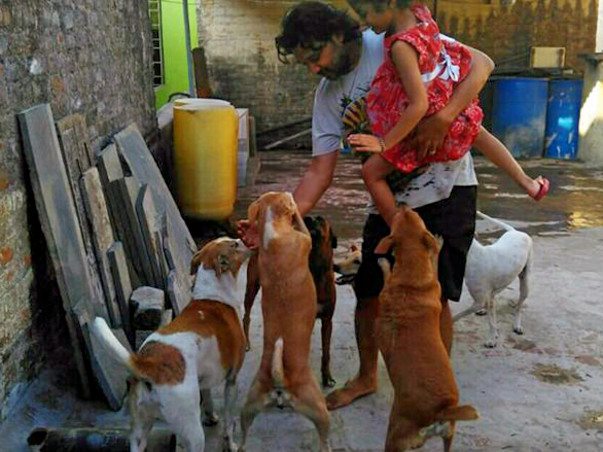 Help Shanmuga Sundaram to pay vet bills for his rescued Animals