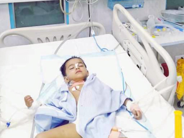 Help 3-year-Old For Liver Transplant Currently In Coma