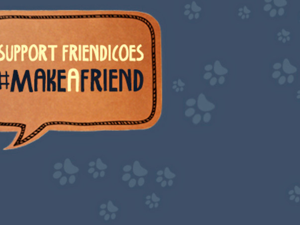"""Save A Shelter Today""-             I am fundraising to  save Friendicoes from being shut down"