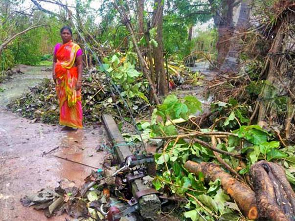 Help Gaja Cyclone Victims Recover