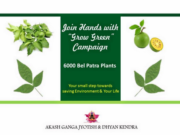 """GROW GREEN"" Campaign- Save Environment"