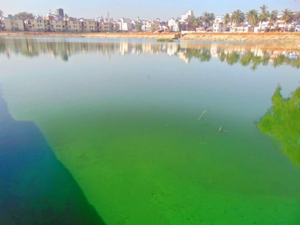 Peace Ride: Restoration of Byrasandra Lake, Jayanagar