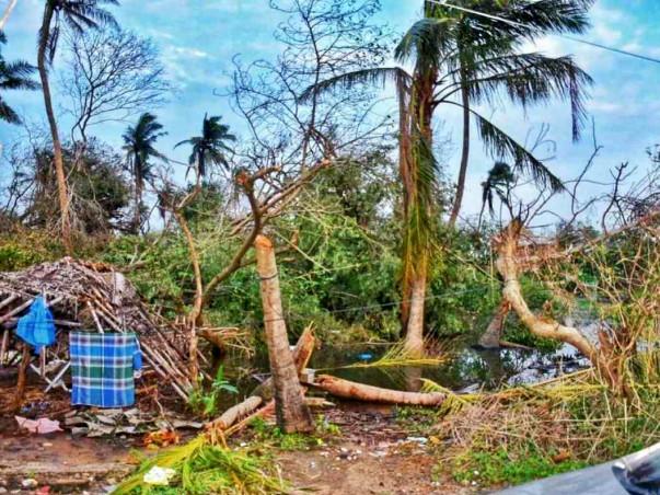 Gaja Cyclone Relief Campaign