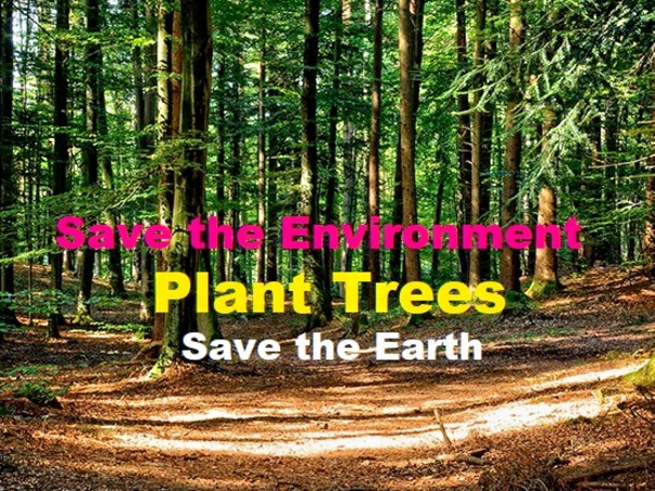 Join me to Plant 5 Millions Trees for environment to Save the Earth