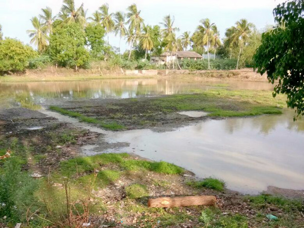 Help Farmers Of Nagapattinam District Reclaim Their Ponds