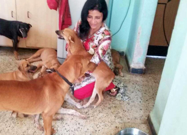 Help For Injured And Paralysed Animals
