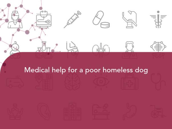 Maheshwaran seeks your help to save a poor homeless dog.