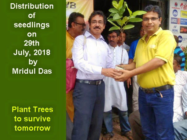 Support Us to Plant 20 thousand trees this year