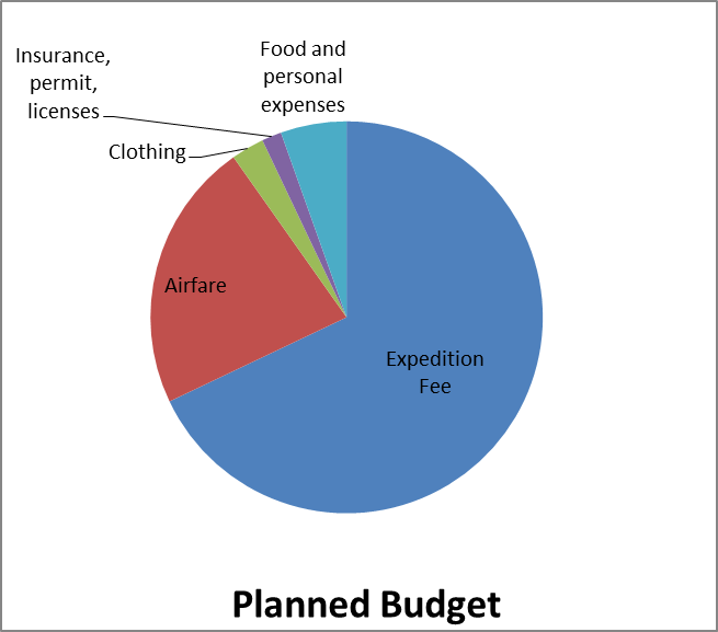 A detailed break-up of the planned budget.