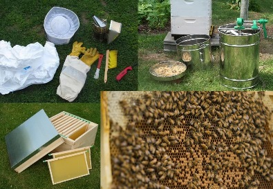 Beekeeping-equipment